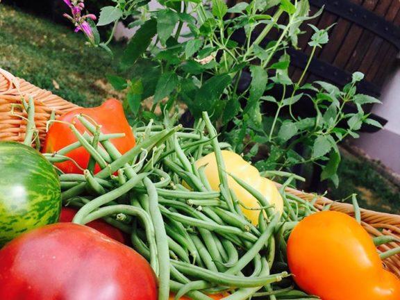 Les légumes de Chez Marthe Kehren